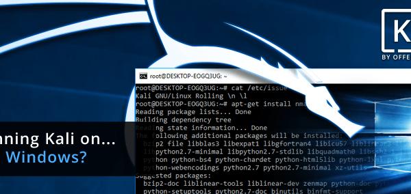 windows 10 kaili linux kurulumu